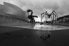 Guggenheim Spider, Bilbao