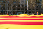 Catalan Flag. Passeig de Grácia, Barcelona