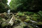 Thomason Foss waterfall, North York Moors